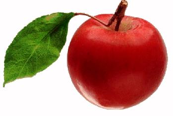 Ősztől újból friss zöldséget és gyümölcsöt kapnak az általános iskolás gyerekek